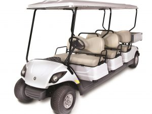 Golf Car Leasing