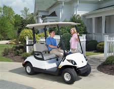 We sell golf carts