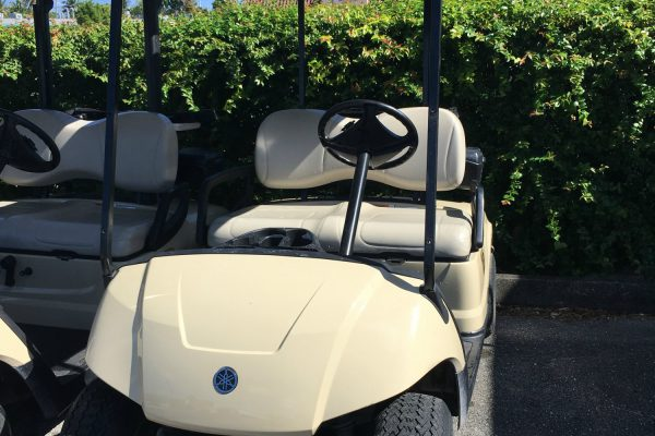 2016 Gas Golf Cart12889088_n